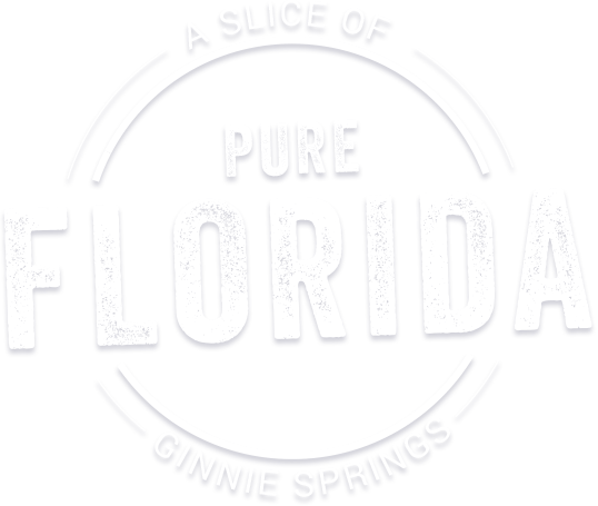 A Slice of Pure Florida   Ginnie Springs Outdoors   High
