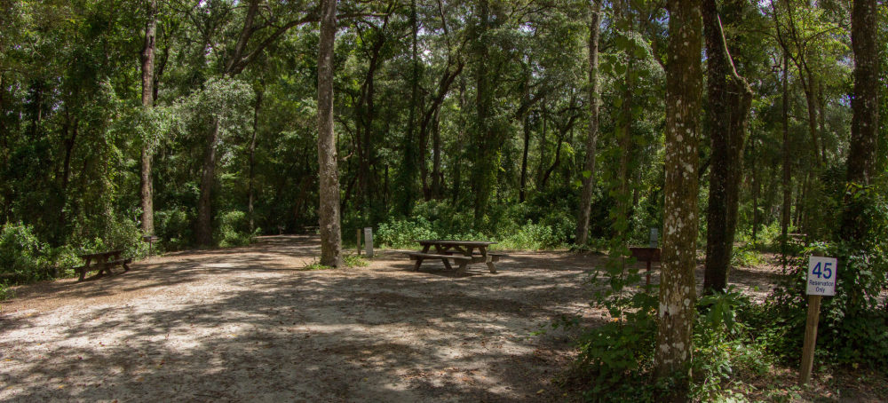 Image of a water & electric camp site at Ginnie Springs.